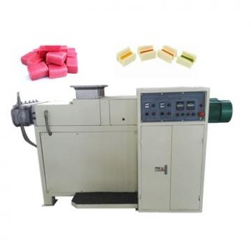 DGP Series Floating Pellet Mill Floating Fish Feed Pellet Machine